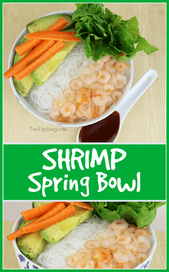 Shrimp Spring Bowl Recipe - This is a fun new take to the classic spring rolls, but you don't have to struggle messing with rice paper - - just use rice noodles!