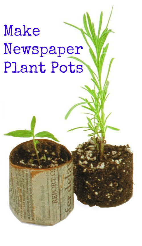 Make Newspaper Plant Pots - Make Newspaper Plant Pots from discarded newspapers to start your garden seedlings. You'll save money using this earth-friendly option.