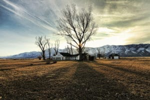 Visit Carson Valley: Northern Nevada's Most Scenic Valley