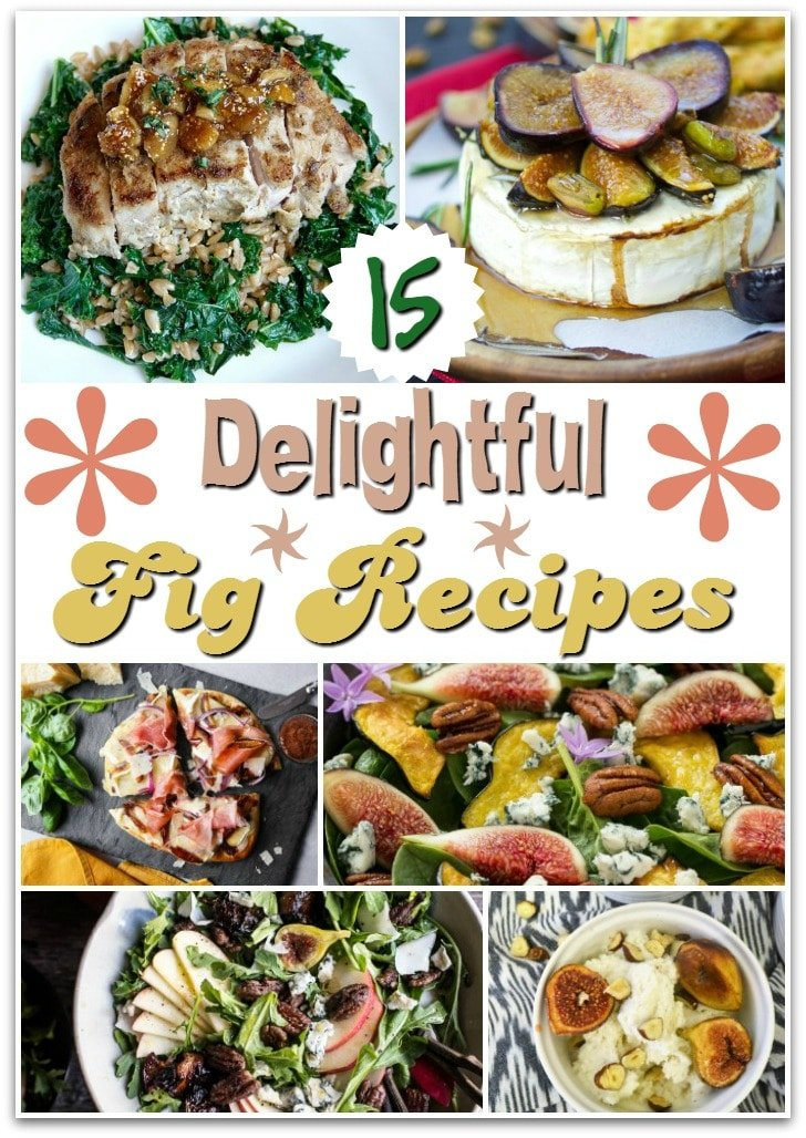 Want to give figs a try? These 15 Delightful Fig Recipes just might fit the bill! Try the Fig & Blue Cheese Bites as an appetizer for your next party or make some gelato for a fancy dessert. You can even get started in the morning with a Chocolate Fig Protein Smoothie or kick back in the evening with a fun cocktail!
