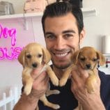 Pet Nutrition Tips with Dr. Evan Antin