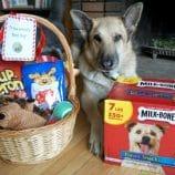 Make the Perfect Dog Christmas Gift Basket – with Printable Dog Gift Tags