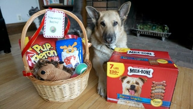 Make the Perfect Dog Christmas Gift Basket - with Printable Dog Gift ...