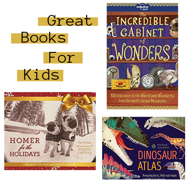 Awesome Book Ideas For The Reader On Your Gift List kids