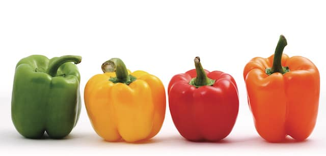 Sweet Peppers - Green, Yellow, Red, Orange