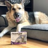 Protecting Our Dog with FRONTLINE® Plus for Dogs