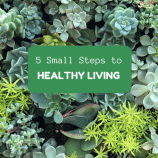 5 Small Steps to Healthy Living