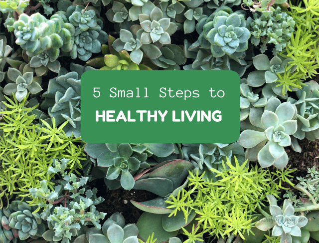 5 Small Steps to Healthier Living