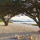 Plan an Unforgettable Weekend in Carmel-by-the-Sea