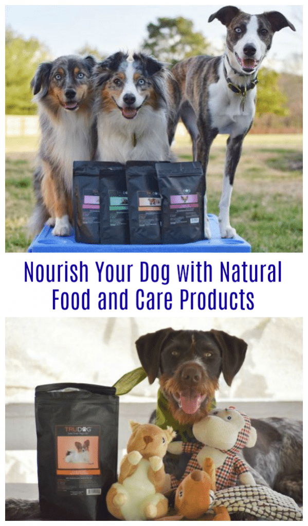 Nourish Your Dog with Natural Food and Care Products