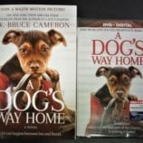 A DOG'S WAY HOME – Perfect Movie for Dog Lovers! + Reader Giveaway