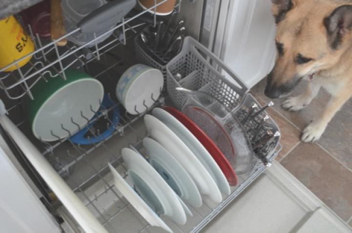 Dishwasher Full