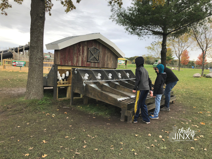 All Seasons Apple Orchard Games
