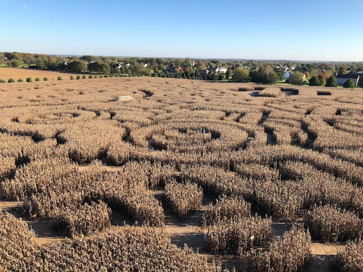 Richardson Adventure Farm Corn Maze Overhead View