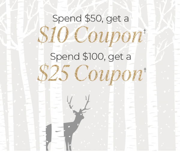 Cricut Black Friday Coupon Offer