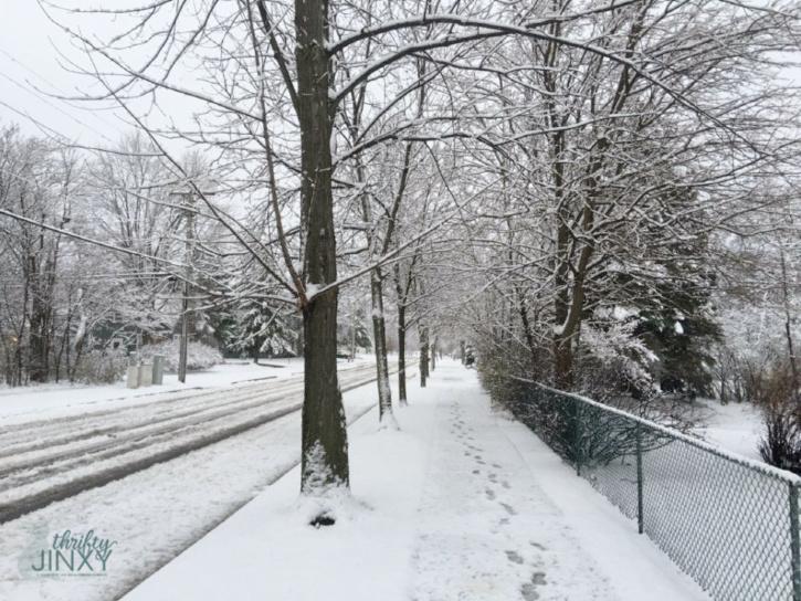 Snowy Winter Weather