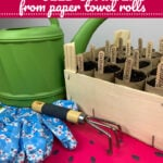 Paper Towel Roll Seed Starters