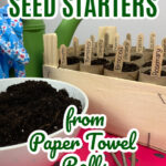 DIY Paper Roll Seed Starter
