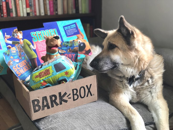 Scooby Doo BARK BOX