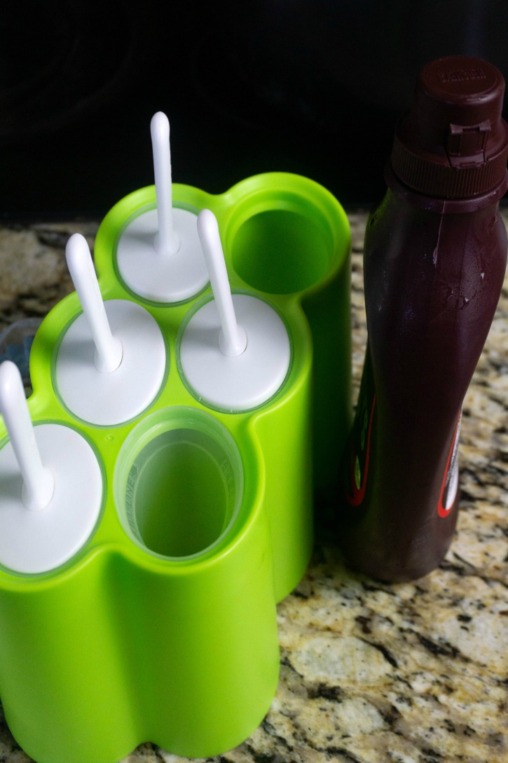 Hot Chocolate Pops mold and syrup