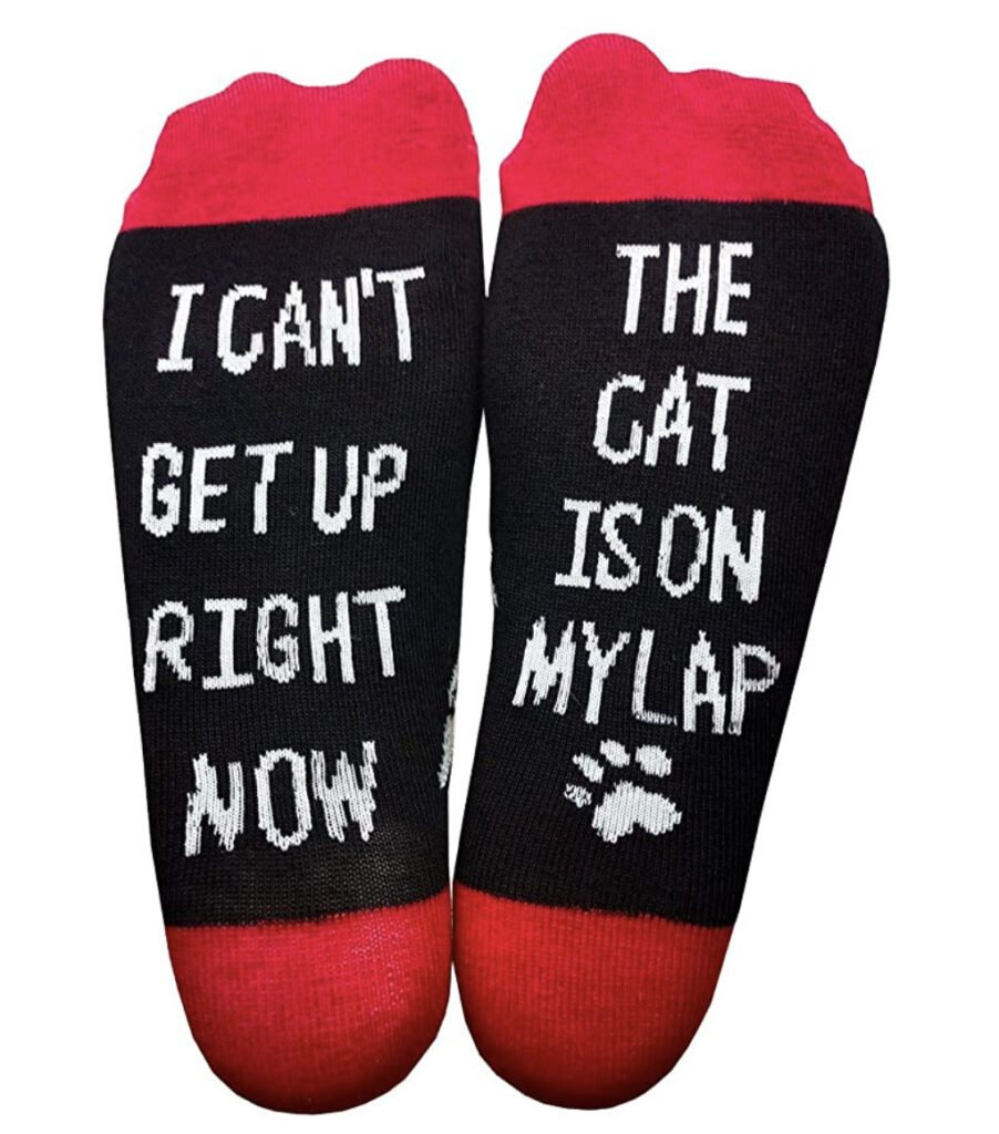 I can't get up the cat is on my lap socks